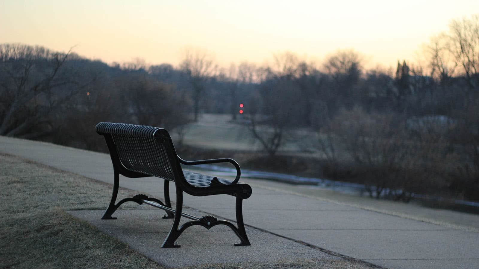 Bench in park image