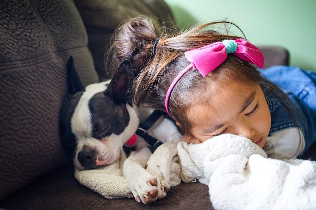 dog and girl sleeping on sofa