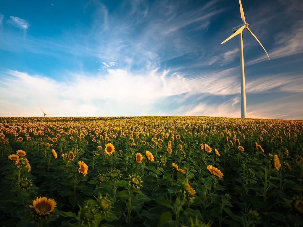 Renewable Green Energy Deals